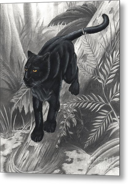 Panther By The Water Metal Print