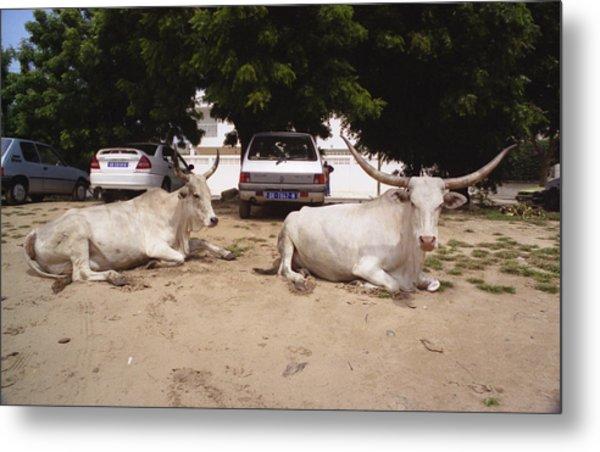 Parking Attendants Dakar Senegal Metal Print by Wayne King