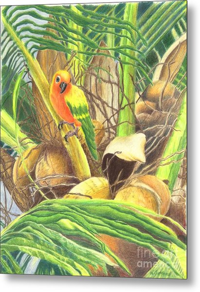 Parrot In Palm Metal Print