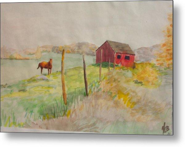 Pasture In Lagrangeville Metal Print