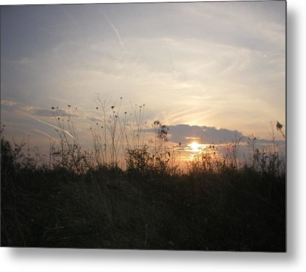 Pasture Sunset Metal Print