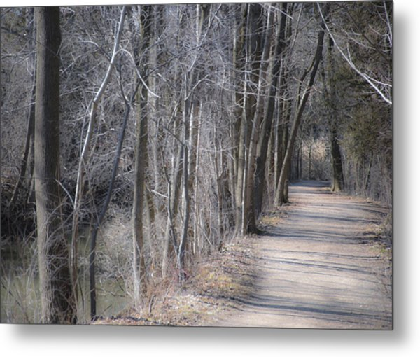 Path-ology Metal Print