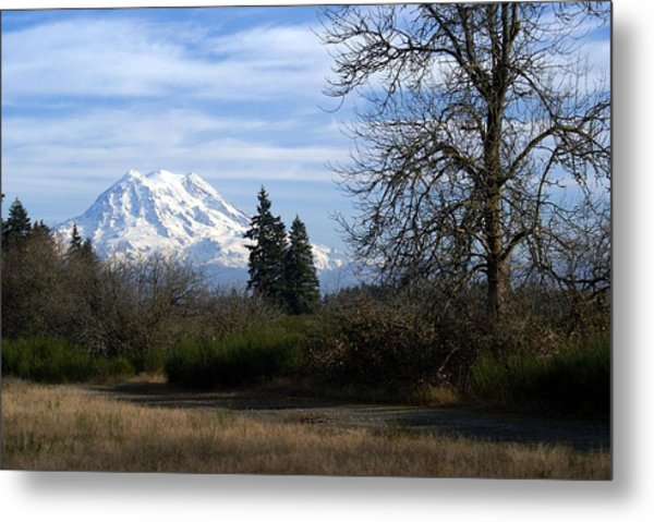 Peaceful Setting Metal Print
