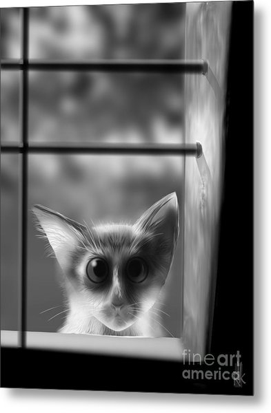 Peeping Tom Metal Print