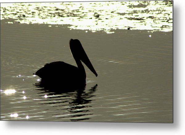 Pelican In Silioutte Metal Print by John Wright