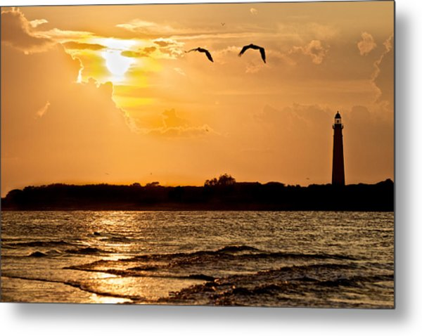 Pelicans Into The Sunset Metal Print