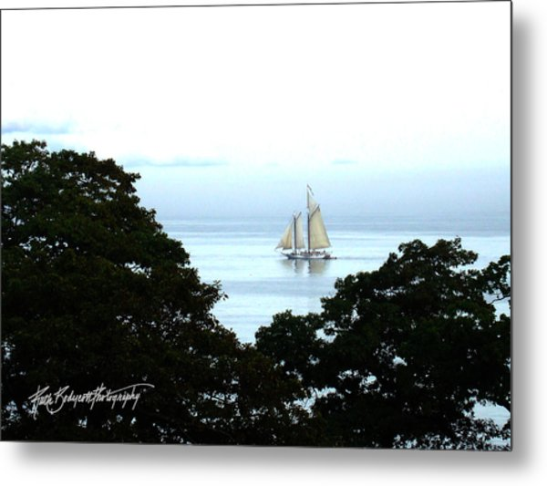 Penobscot Bay Sailing Metal Print by Ruth Bodycott