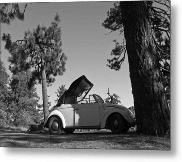 Pine Mountain California Metal Print by Ian Stevenson