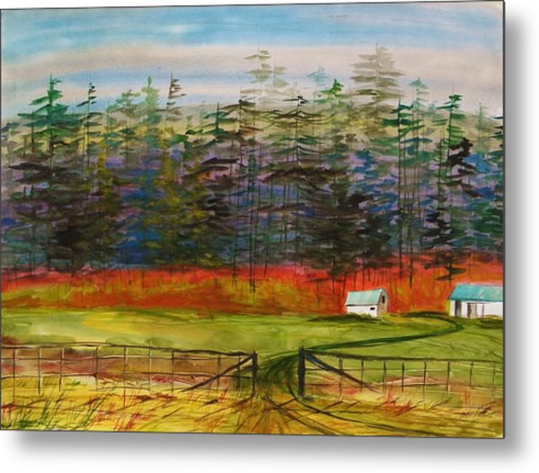 Pines Behind The Barns Metal Print by John Williams