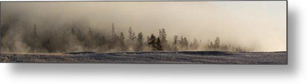 Pines In The Mist Metal Print