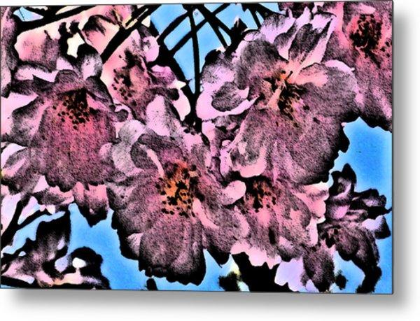 Pink Cherry - Black On Blue Metal Print by Jen White