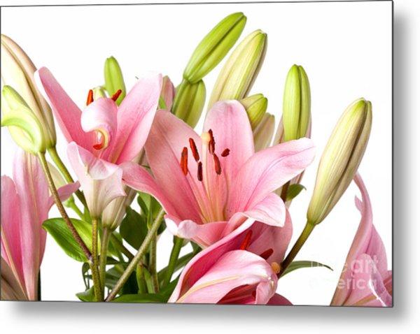 Pink Lilies 04 Metal Print