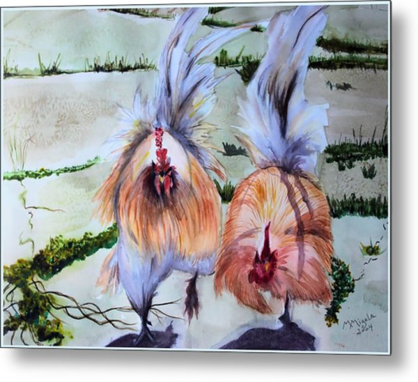 Plump Chickens Metal Print by Myrna Migala