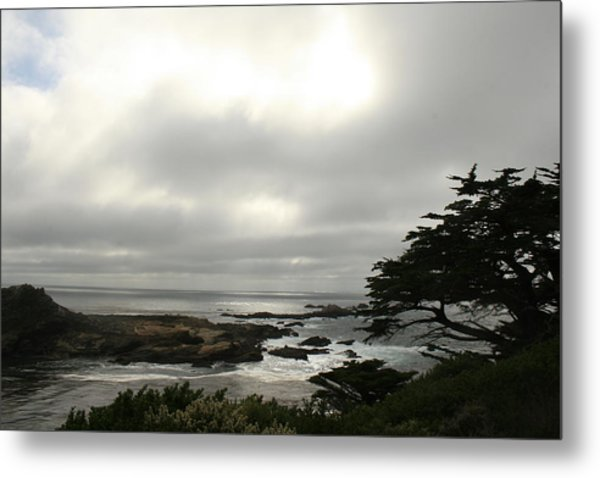 Point Lobos View Metal Print by Suzanne Lorenz
