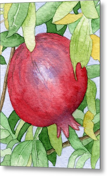 Pomegranate In Tree Metal Print by Eunice Olson
