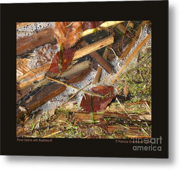 Pond Debris With Bubbles-iii Metal Print