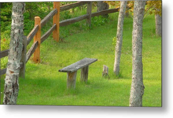 Pondering Bench Metal Print by Michael Carrothers