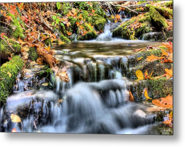 Pooling Resources Metal Print by JC Findley