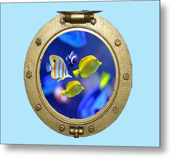 Porthole Of Fish Metal Print
