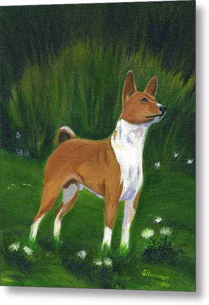 Portrait Of A Basenji Metal Print