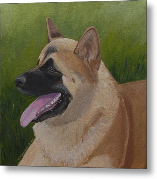 Portrait Of An Akita Metal Print