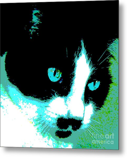 Poster Kitty Metal Print