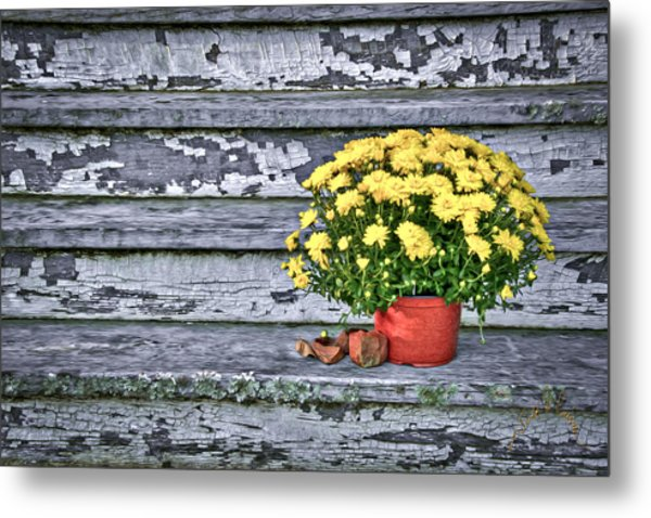 Pot Of Gold Metal Print by Williams-Cairns Photography LLC