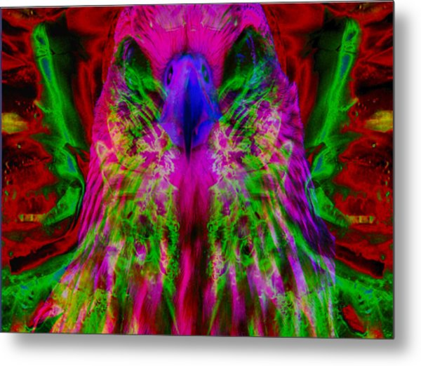 Power Hawk 2 Metal Print by Colleen Cannon