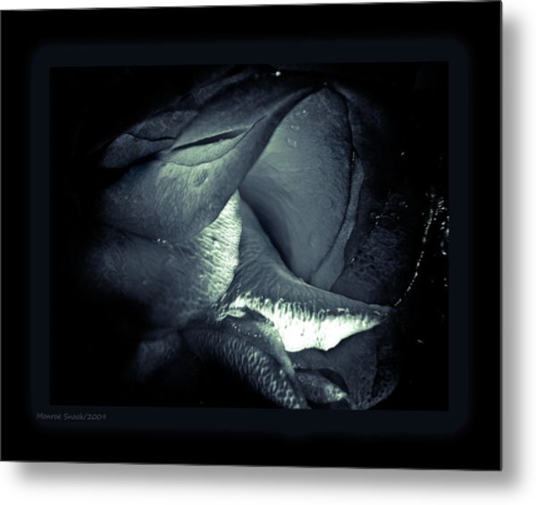 Prolong Metal Print by Monroe Snook