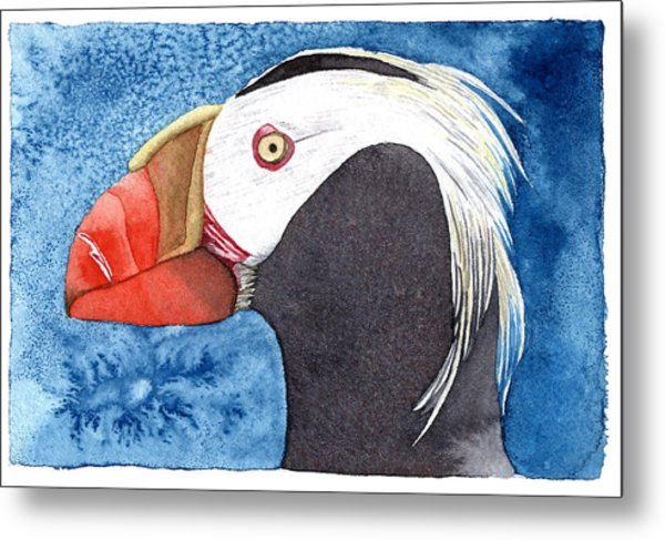 Puffin Metal Print by Eunice Olson