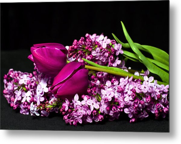 Purple Flowers Metal Print by Trudy Wilkerson