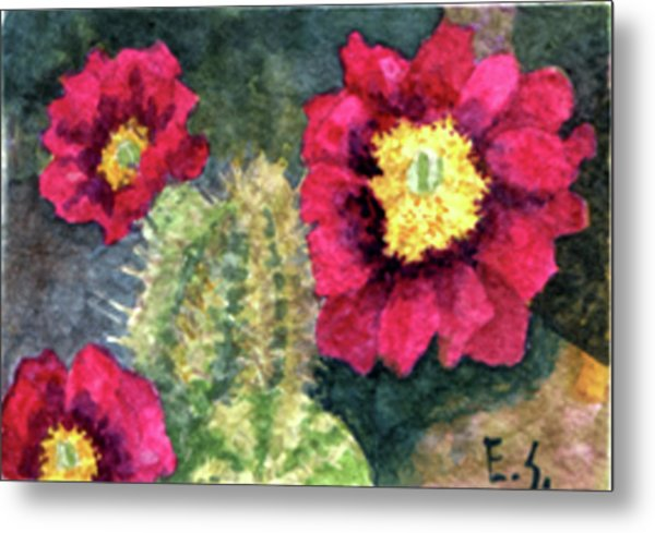 Purple Hedgehog Cactus Metal Print