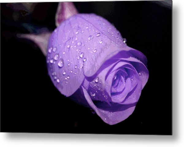 Purple Rain Drops Metal Print