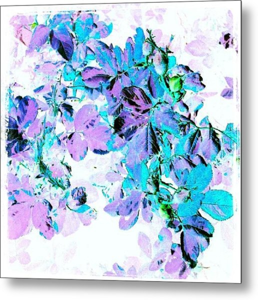 Purple Rose #android #andrography Metal Print
