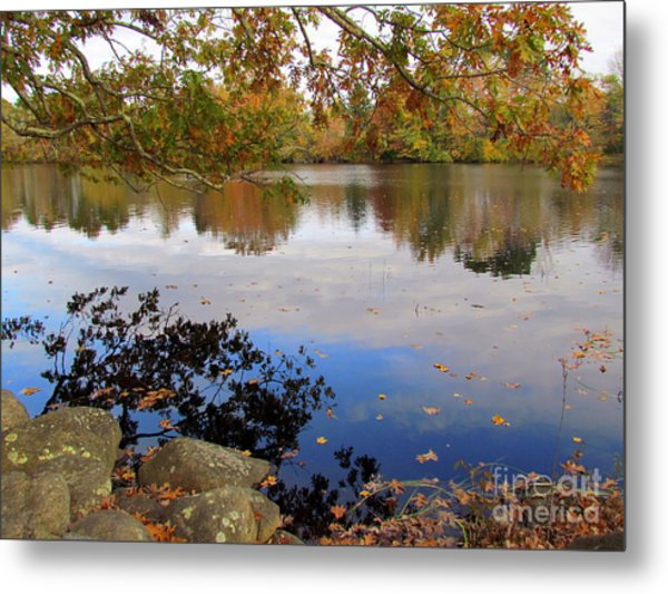 Queen's River Reflection Metal Print