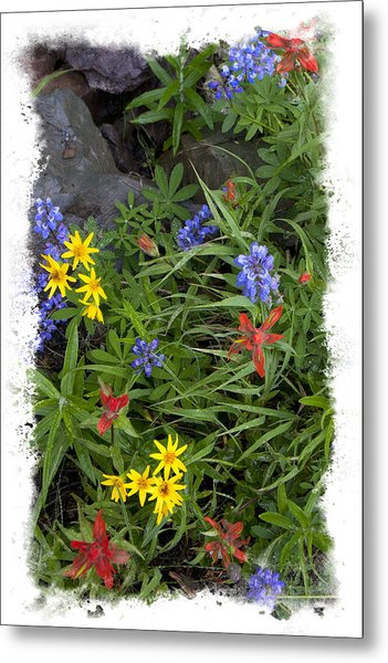 Rain Forest Bouquet Metal Print by Judy Deist