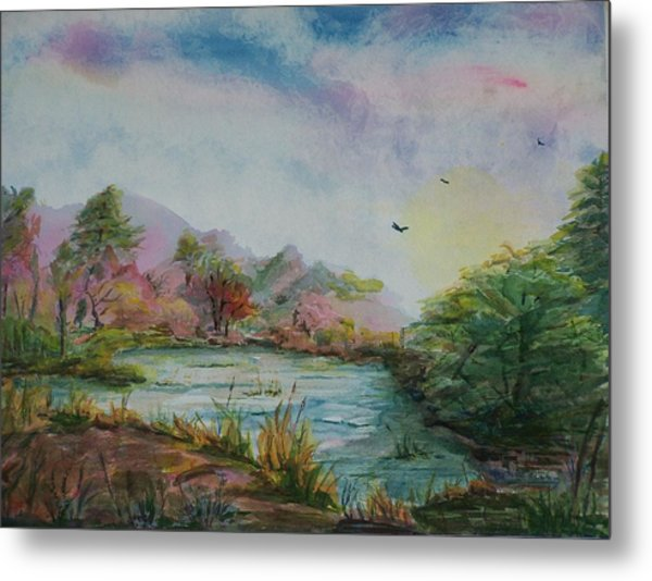 Rainbow Pond Metal Print