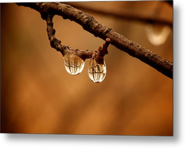 Raindrop Reflection Metal Print