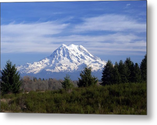 Rainier In High Contrast Metal Print