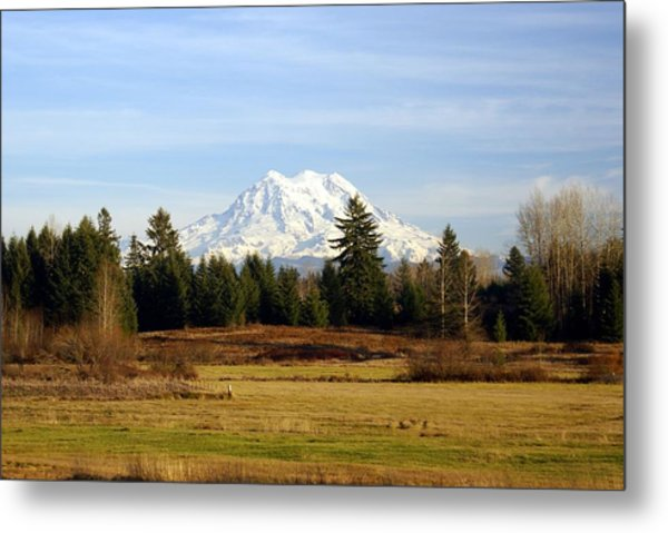 Rainier Standing Tall Metal Print