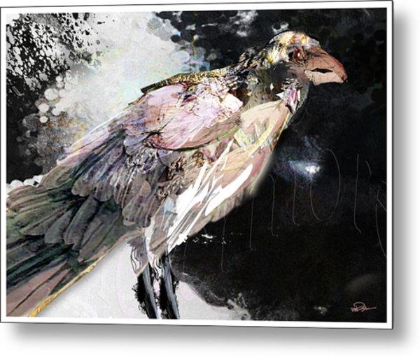 Raven 10 Metal Print by James VerDoorn