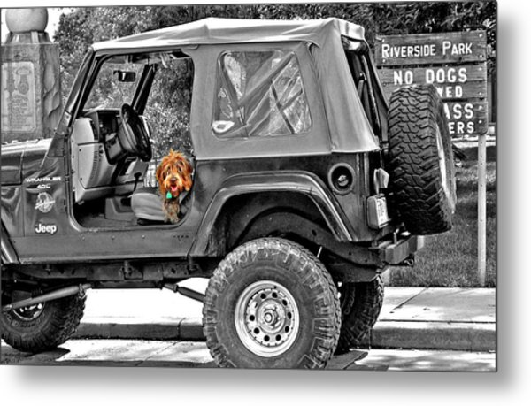 Rebel With A Cause Metal Print by Jenna Cornell