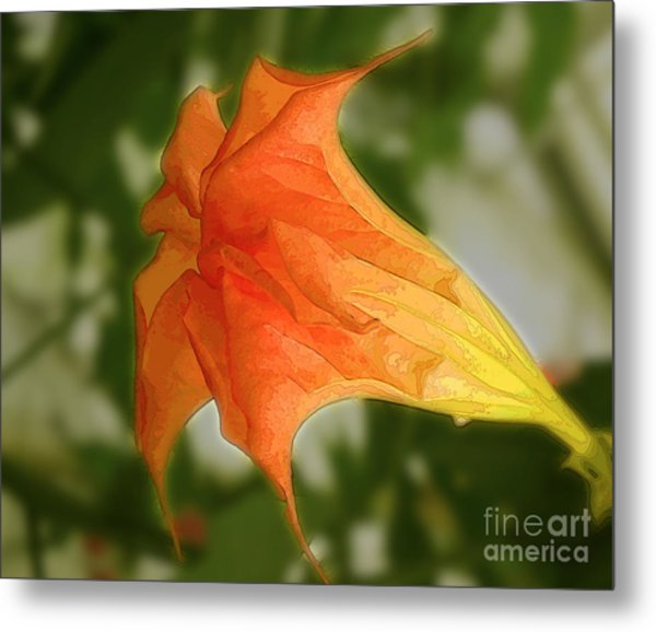 Red Angels Trumpet Flower Metal Print
