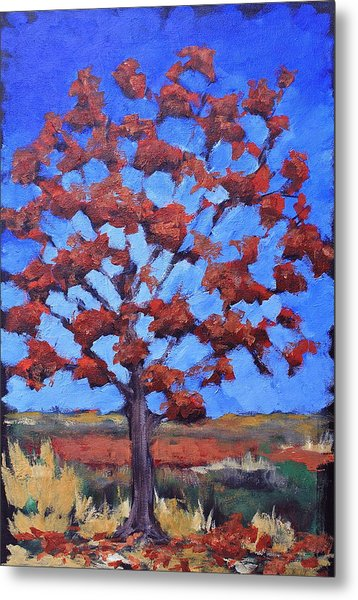 Red Maple Metal Print by Lisa Masters