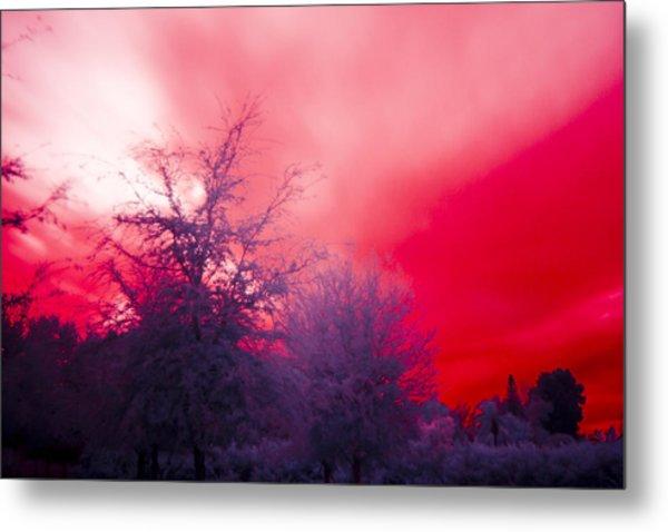 Red Metal Print by Nicholas Evans