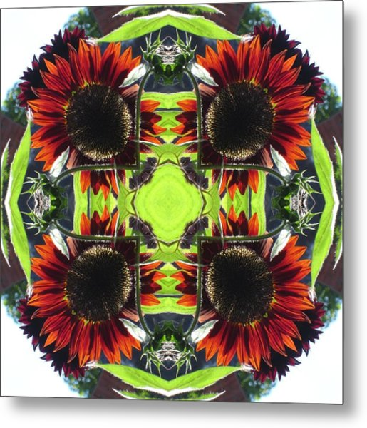 Red Sunflowers And Leaf Metal Print