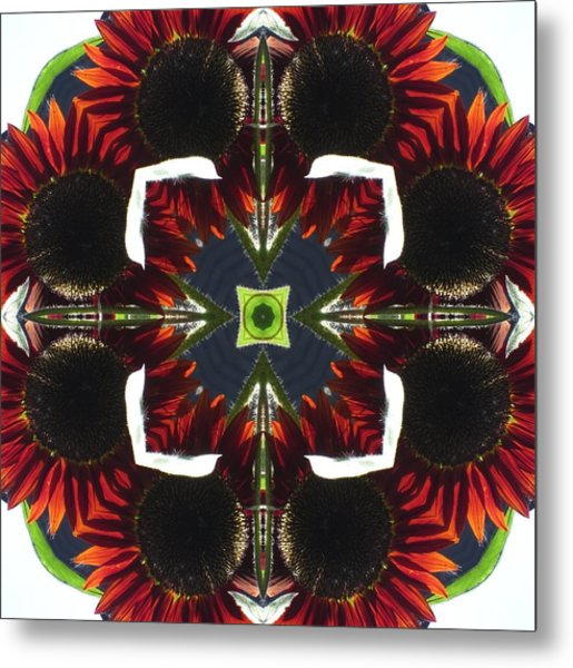 Red Sunflowers With Blue Center Metal Print