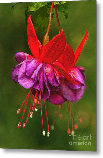 Redpurple Flower Metal Print
