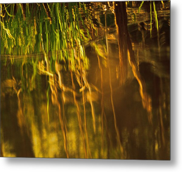 Reflecting On A Summer Morn Metal Print