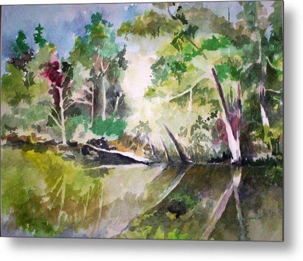 Reflections Of Blackwater River Fl. Metal Print